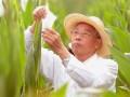 种业发展在中国得到空前重视