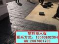车库顶板种植绿化排水板价格20高塑料排水板厂家批发