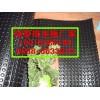 安阳塑料排水板厂家%#安阳塑料防水卷材厂家品质保证