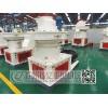 生物质颗粒生产线 竹屑颗粒压缩机 木屑颗粒生产线设备