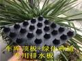 【忻州】塑料疏水板%车库底板疏水板《质量好》